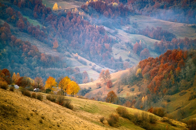 17 photos carpathians